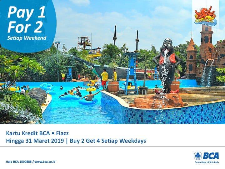 Ocean Park BSD Promo Spesial Berenang Hemat Dengan BCA CARD! Beli 1 Gratis 1 Tiket Masuk